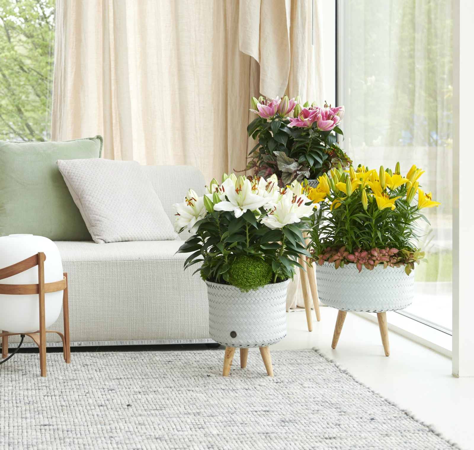 mooiwatplantendoen.nl 1206 473