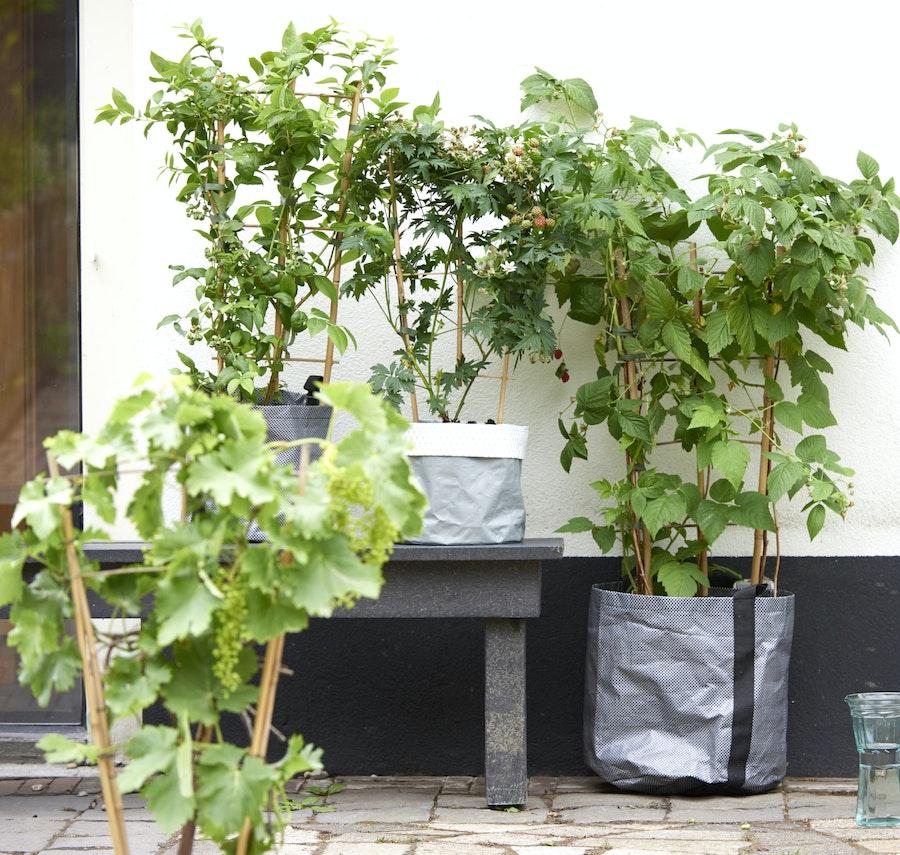 mooiwatplantendoen.nl 1206 193